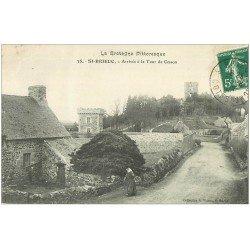 carte postale ancienne 22 SAINT-BRIEUC. Paysanne arrivée à la Tour de Cesson 1908