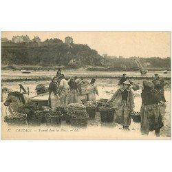 carte postale ancienne 35 CANCALE. Travail des Huîtres Parcs