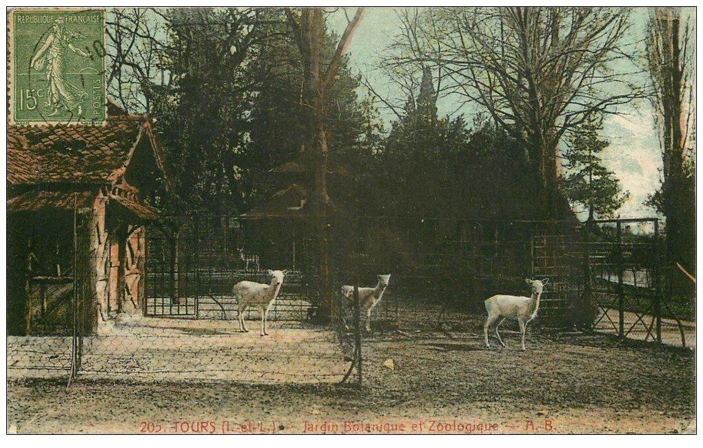 37 tours jardin botanique zoologique for Jardin botanique tours