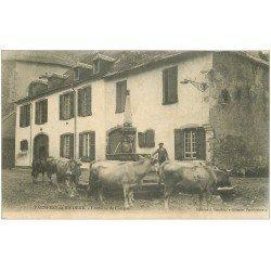 carte postale ancienne 65 BAGNERES-DE-BIGORRE. Vaches à la Fontaine de Campan 1905
