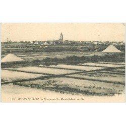 carte postale ancienne 44 BOURG DE BATZ. Marais Salants. Mulons