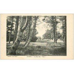 carte postale ancienne 44 PORNIC. Le Parc des Flots