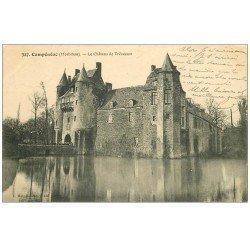 carte postale ancienne 56 CAMPENEAC. Château de Trécesson 1914