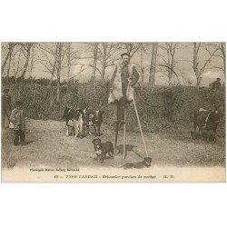 carte postale ancienne 40 LANDES. Echassier gardien de Vaches 1923. Vieux métiers Campagne