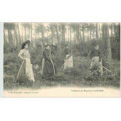 carte postale ancienne 40 LANDES. Tailleuses de Bruyères vers 1900. Vieux métiers Campagne