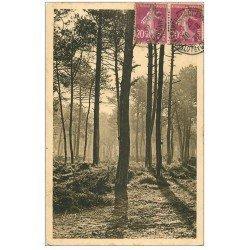 carte postale ancienne 40 LES LANDES. Matin d'Automne en Forêt 1932