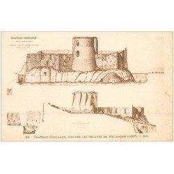 carte postale ancienne 27 CHATEAU-GAILLARD. Petit Andély