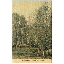 carte postale ancienne 27 PACY-SUR-EURE. L'Eure et Chevaux dans la Prairie. Superbe carte toilée 1906