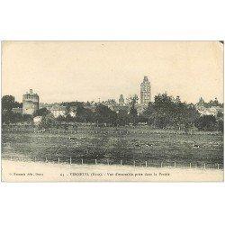 carte postale ancienne 27 VERNEUIL-SUR-AVRE. La Prairie