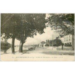 carte postale ancienne 41 MONTRICHARD. Quais Allée des Marronniers 1924