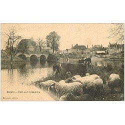 carte postale ancienne 41 SALBRIS. Pont et Troupeau Moutons et Vaches 1906