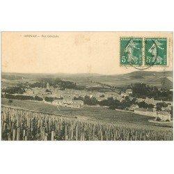 carte postale ancienne 51 AVENAY. Vue 1910