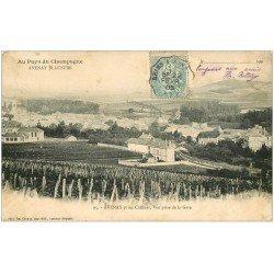 carte postale ancienne 51 AVENAY. Vue prise de la Gare 1905. Vignes