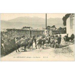 carte postale ancienne 09 LAVELANET. Le Chevrier et ses Chèvres et Boucs. Voieux métiers