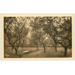 carte postale ancienne PARIS 13. Maison Augustines Rue de la Santé. Verger