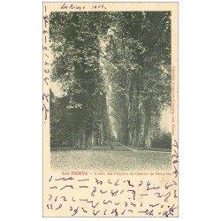 carte postale ancienne 10 LES RICEYS. Allée des Platanes du Château de Ricey-Bas 1902. Ecriture spéciale...