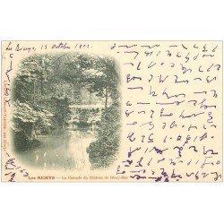 carte postale ancienne 10 LES RICEYS. Château de Ricey-Bas 1902 Cascade. Ecriture spéciale...