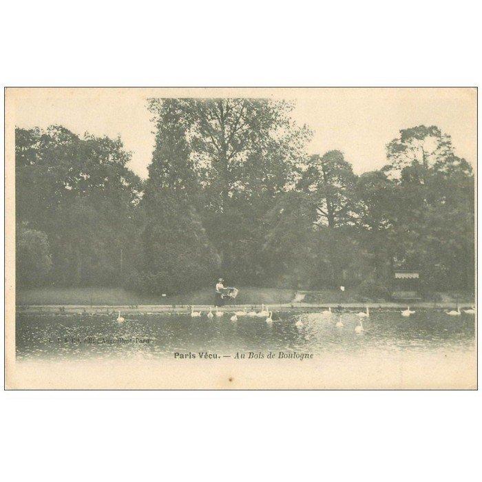 PARIS VECU Cygnes Lac du Bois de Boulogne ~ Manoir Bois De Boulogne