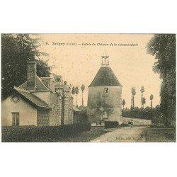 carte postale ancienne 45 BOIGNY. Château Commanderie jeune Lavandière