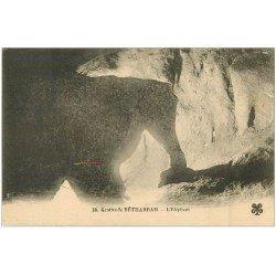 carte postale ancienne 64 BETHARRAM. Grottes. L'Eléphant