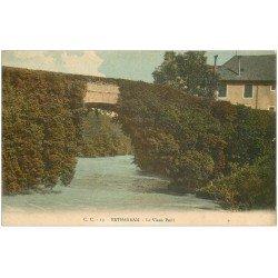 carte postale ancienne 64 BETHARRAM. Le Vieux Pont en fleur