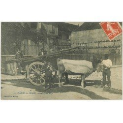 carte postale ancienne 64 SALIES-DE-BEARN. Attelage de Boeufs transport du Bois 1911 avec Chien