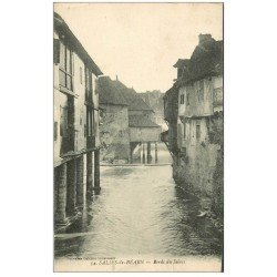 carte postale ancienne 64 SALIES-DE-BEARN. Bords du Saleys