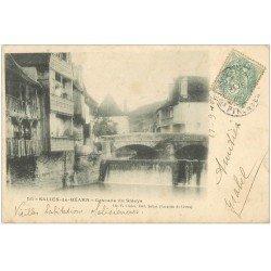 carte postale ancienne 64 SALIES-DE-BEARN. Cascade du Saleys et Habitations Salisiennes 1903