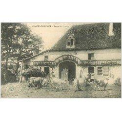 carte postale ancienne 64 SALIES-DE-BEARN. Ferme du Camou. Paysannes et Vaches