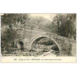 carte postale ancienne 48 MEYRUEIS. Pont sur la Jonte