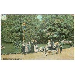Lot 10 Cpa LILLE 59. Transport Ane, P'tit Quinquin, Fort réduit, Grand'Place, Palais Eté et Beaux-Arts, Pont Napoléon