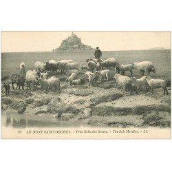 carte postale ancienne 50 LE MONT SAINT-MICHEL. Prés Salés des Grèves. Berger et Moutons 25