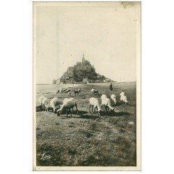 carte postale ancienne 50 LE MONT SAINT-MICHEL. Prés Salés des Grèves. Moutons 1947