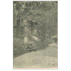 carte postale ancienne 52 BOURBONNE-LES-BAINS. Le Parc du Casino