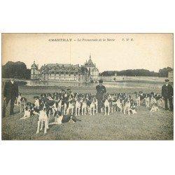 carte postale ancienne CHANTILLY 60. La Promenade de la Meute pour Chasse à Courre