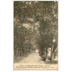 carte postale ancienne 70 GRAY. Promenade des Tilleuls Allée des Capucins