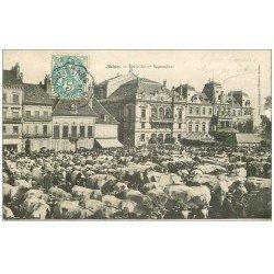 carte postale ancienne 71 AUTUN. Foire aux Bestiaux 1904