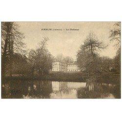 carte postale ancienne 14 AMBLY. Le Château