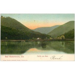 carte postale ancienne 67 BAD NIEDERBRONN ELS. Partie am See. Timbre absent