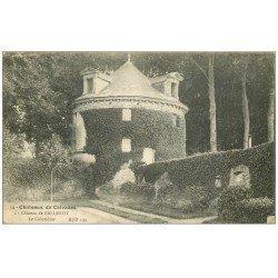 carte postale ancienne 14 BALLEROY. Le Château et Colombier 1918