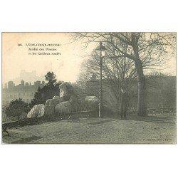 carte postale ancienne 69 LYON. Cailloux roulés Jardin des Plantes