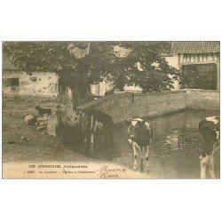 carte postale ancienne 14 CAEN. La Laiterie Vaches à l'Abreuvoir 1905