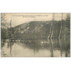 carte postale ancienne 72 SAINT-LEONARD-DES-BOIS. Canards sur la Sarthe