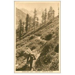 carte postale ancienne 74 CHAMONIX. Argentière. Chemin de Lognan rentrée des Foins