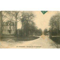 carte postale ancienne 78 LE VESINET. Avenue de la Princesse 1910