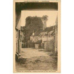 carte postale ancienne 78 VALLEE CHEVREUSE. Château Madeleine Entrée