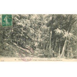 carte postale ancienne 78 VALLEE CHEVREUSE. Escalier vers Château Madeleine animation