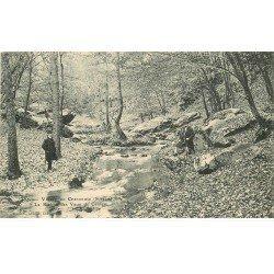 carte postale ancienne 78 VALLEE CHEVREUSE. Rivière des Vaux de Cernay animation