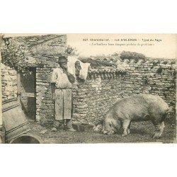 17 ILE D'OLERON. Type du Pays et son Cochon. Métiers de la Ferme