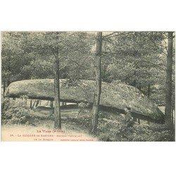 carte postale ancienne 81 CASTRES LE SIDOBRE. Rocher Tremblant avec personnage